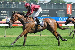 Pinot To Oaks After Ethereal Stakes Win