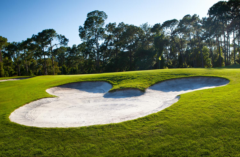 Walt Disney World Golf/Palm Magnolia
