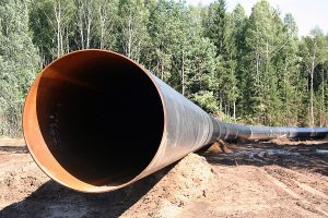 construction of the pipeline/ construction is conducted through a wood for what the glade is laid