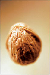 No Nuts! Dealing with Nut Allergies