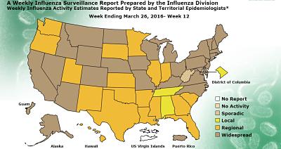 Flu Activity Still Elevated Across US - Flu map us