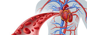 Medication That Inhibits PCSK9 Reduced CVD Risk in T2D Patients