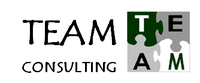 TEAM Consulting image