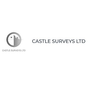 Castle Surveys Ltd image
