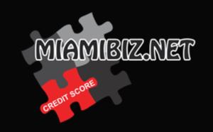 Miami biz consulting corp primary image