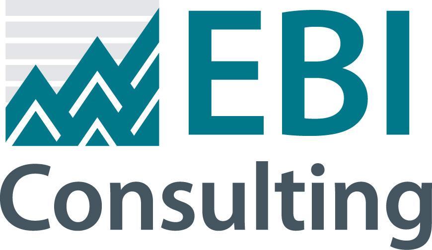 EBI CONSULTING image