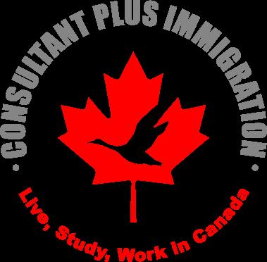 Consultant Plus Immigration Ltd primary image