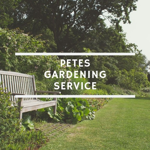 Petes Gardening Service          ABN-63828480113 image