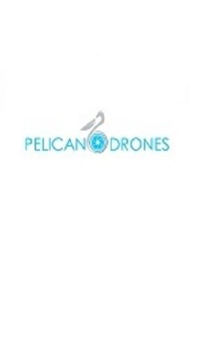 Pelican Drones  image