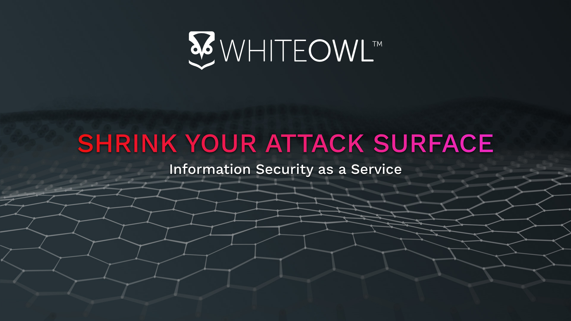 White Owl InfoSec Services LLC image