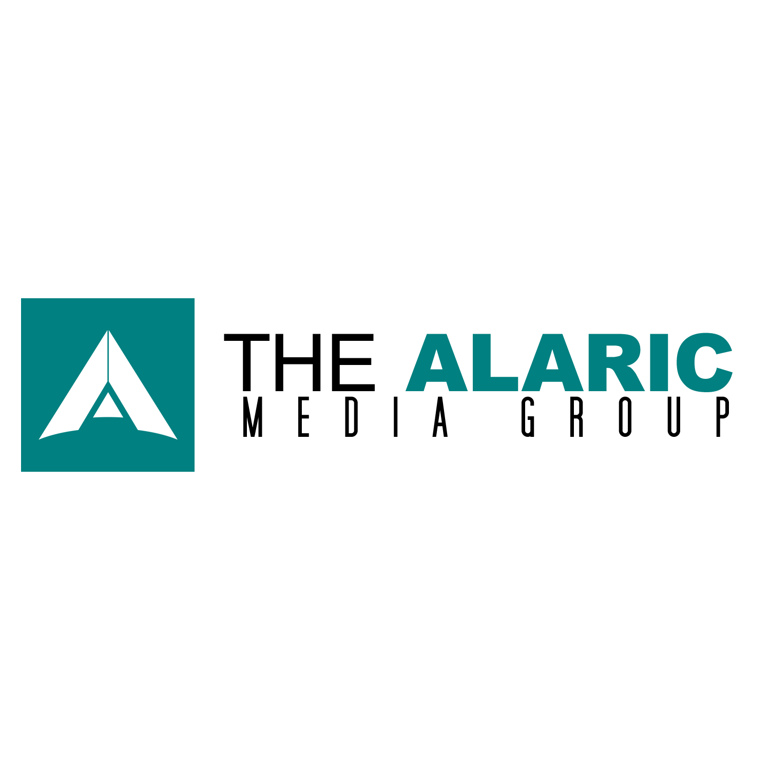 The Alaric Media Group image