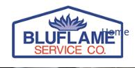 BluflameService Company image