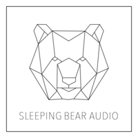 Jarrett Pryzgoda // Sleeping Bear Audio Inc image