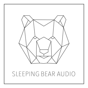 Jarrett Pryzgoda // Sleeping Bear Audio Inc primary image