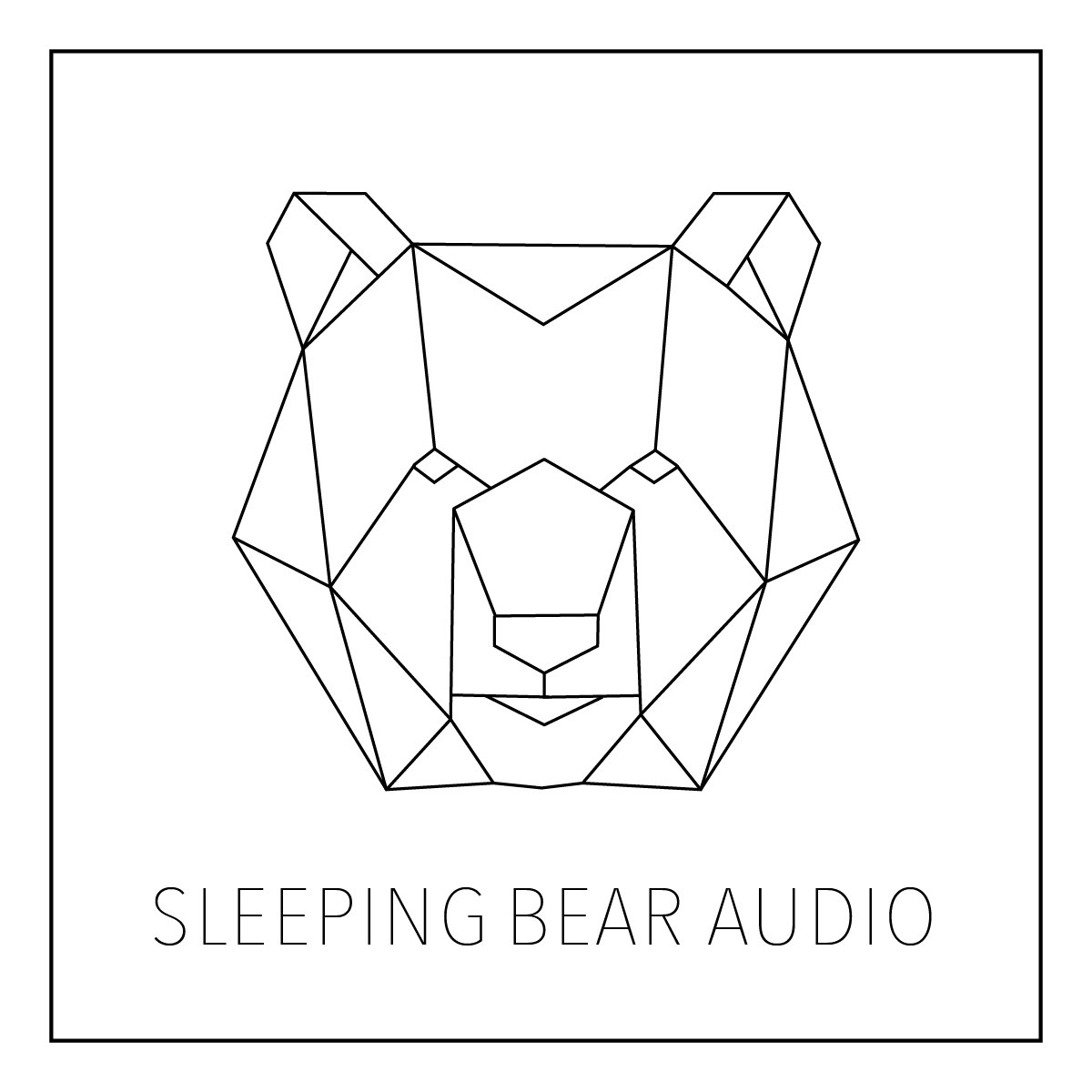 Jarrett Pryzgoda | Sleeping Bear Audio image