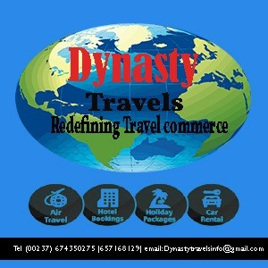 Dynasty Travels primary image