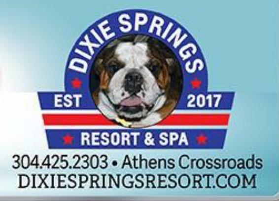Dixie Springs Resort & Spa primary image