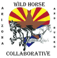 Arizona Wild Horse and Burro image