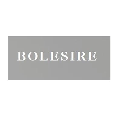 BolesirePrivate Limited image