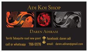 Adi Koi primary image