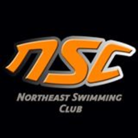 Northeast Swimming and Aquatic Club image