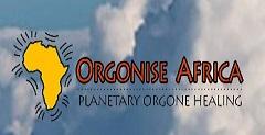 Orgonise Africa image