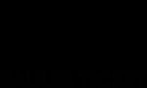 SAULER TICKET primary image