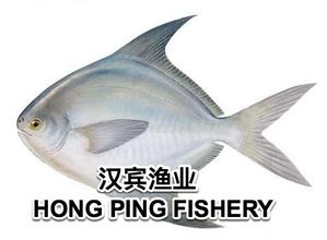 Hong Ping Fishery primary image