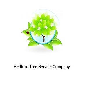 Bedford Tree Service Company image
