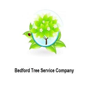 Bedford Tree Service Company primary image