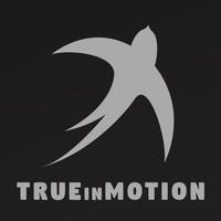 TrueInMotion image