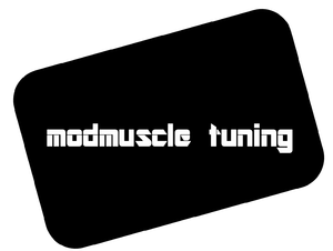 Modmuscle tuning primary image