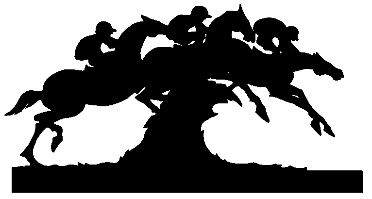 Carolina Cup image