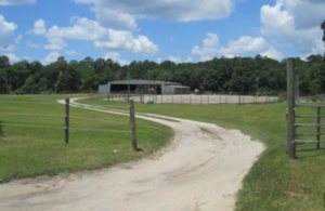 Sweet Water Farm and Stables image