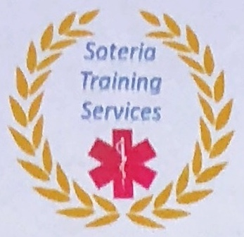 Soteria Training Services Inc. image