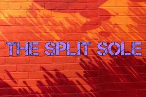 The Split Sole primary image