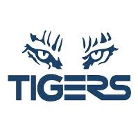 Tigers Financial Services image