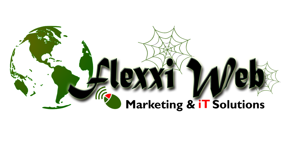 Flexxiweb Marketing and IT Solutions (PTY) LTD  image