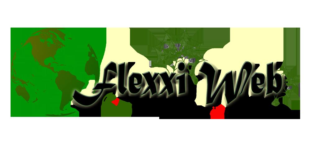 Flexxiweb Marketing and IT Solutions (PTY) LTD  primary image