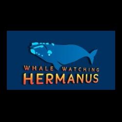 WHALE WATCHING HERMANUS image
