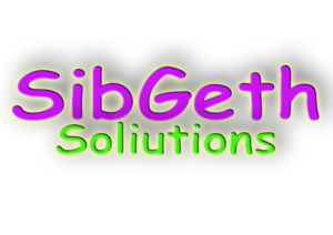 SibGeth Solutions primary image