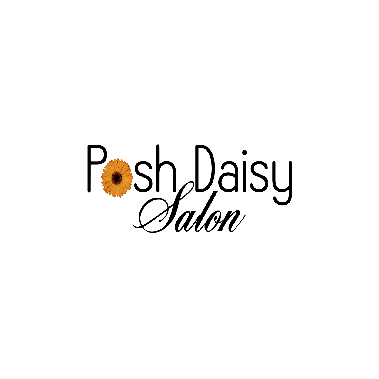 The Posh Daisy Salon Spa LLC image