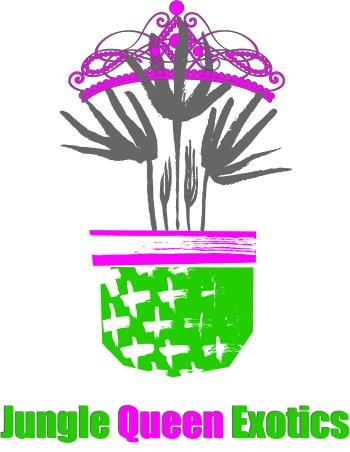 Jungle Queen Exotics, LTD primary image