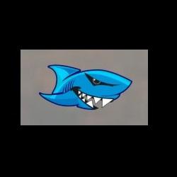 SHARK CAGE DIVING GANSBAAI image