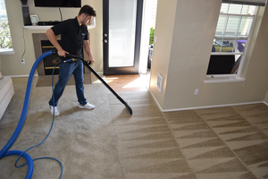 Vivo Cleaning Services image