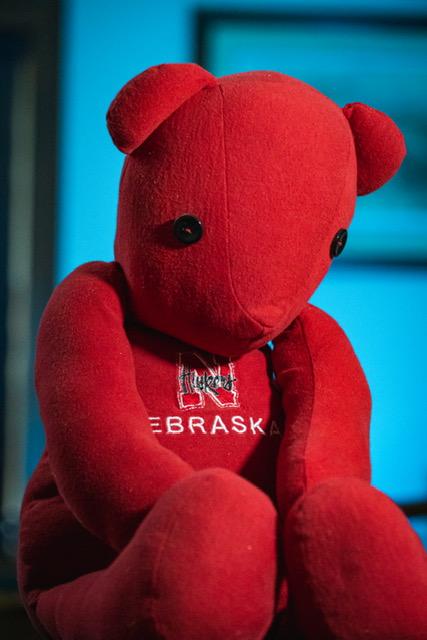 Forever Teddy Bear image