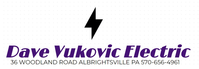 Dave Vukovic Electric image