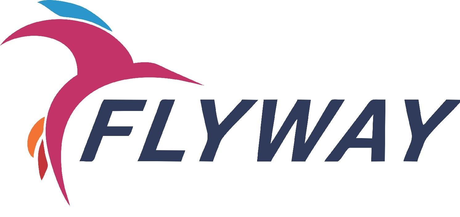 Flyway Immigration, Ahmedabad image