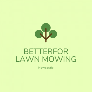 Betterfor Lawn Mowing image