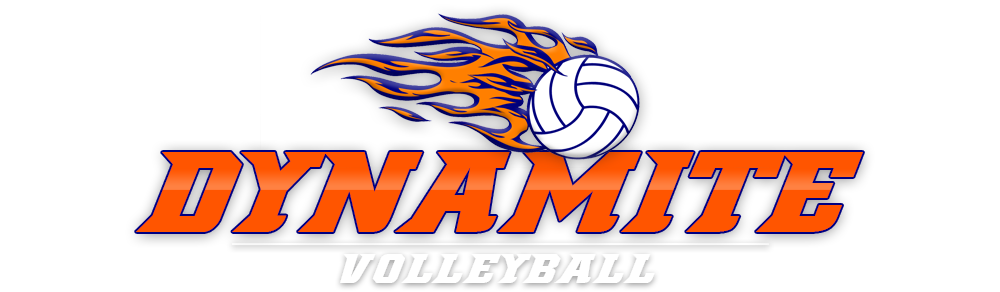Dynamite Volleyball image